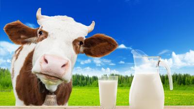 Sữa công thức rất tốt cho sức khỏe của trẻ