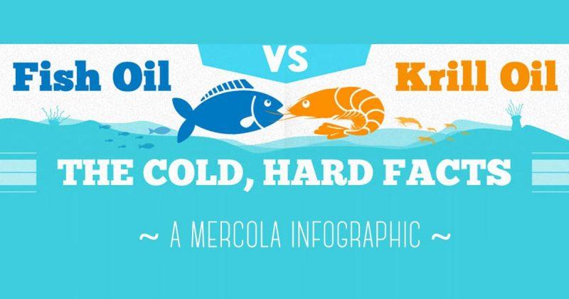 Fish oil and Krill oil